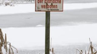 Halbtrockenrasen  am Speckenberg ist einzigartig